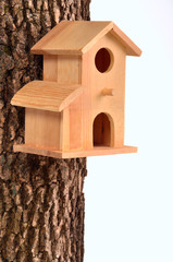 Comfortable starling-house on a tree trunk isolated