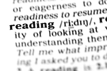 reading (the dictionary project)