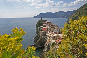 Vernazza avec genêts au premier plan, Cinque Terre, Italie.