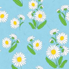 Keuken foto achterwand Lieveheersbeestjes vector floral light blue pattern with chamomiles