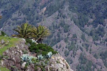 Landscape in La Gomera, Canary island,Spain