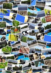 collage kenya