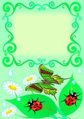Photo sur Aluminium Coccinelles frame with butterfly, colour, sheet, ladybug