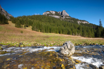 Fototapete - Polish Tatra mountains - Koscieliska valley
