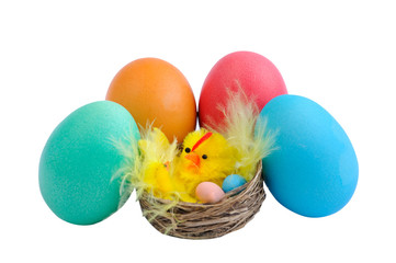 five Easter eggs and chicken