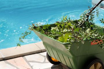brouette au bord de la piscine