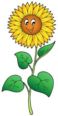 Cute cartoon sunflower