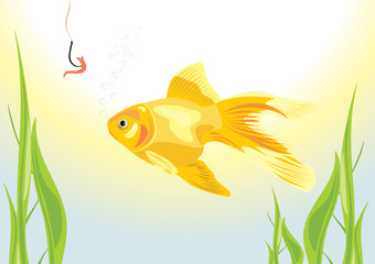 Goldfish and worm on a fish hook