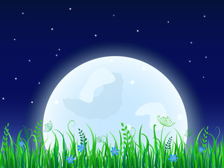 Huge moon with grass meadow. Night Vector illustration.