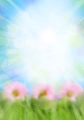 Foto op Textielframe Bloemen Burst of light in spring background