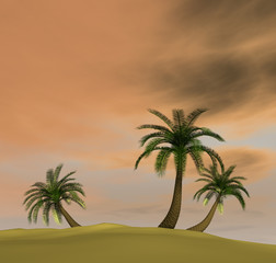 3d render of island with palm-trees and orange pink dusk sky