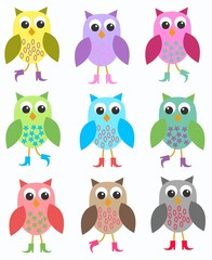Wall Murals Birds, bees colourful owls