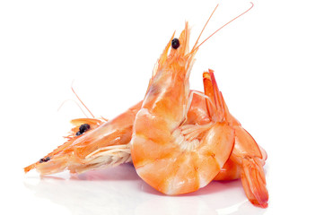 Deurstickers Schaaldieren shrimps