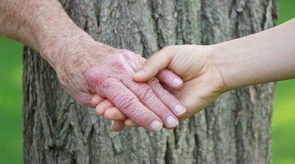 Senior and young woman holdign hands over tree trunk