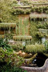 Vertical garden on the wall