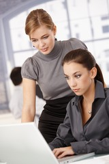 Young businesswomen working in bright office