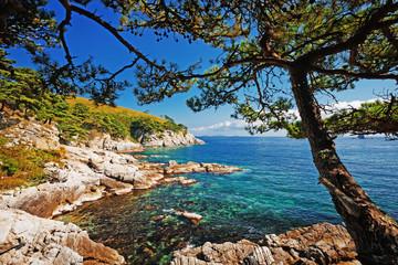 beautiful stone seashore
