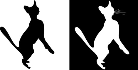 silhouette cats