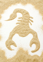 scorpion out of the sand