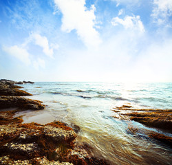 Wall Mural - Sea