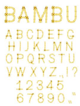 vector bamboo wood abc alphabet isolated on white