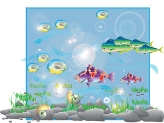 color illustration with fish in aquarium
