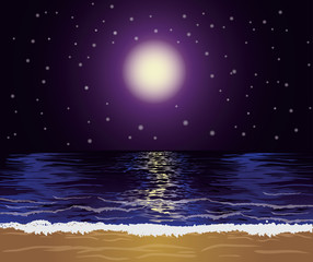 Beautiful tropical night, vector illustration