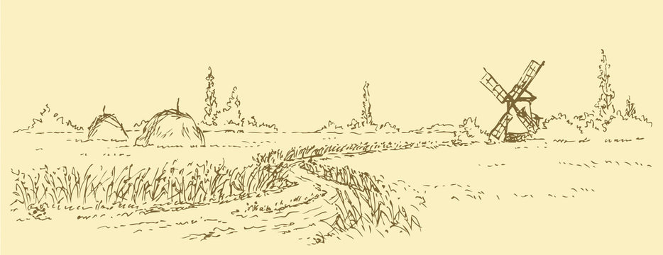 Summer landscape with views of the wheat field