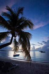 Mauritius during dawn
