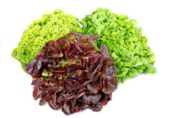 Drei Sorten Salat