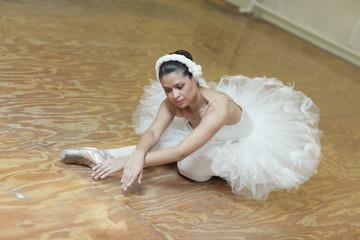 Ballerina posing in the studio