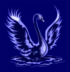 Cigno Blu-Blue Swan-Vector