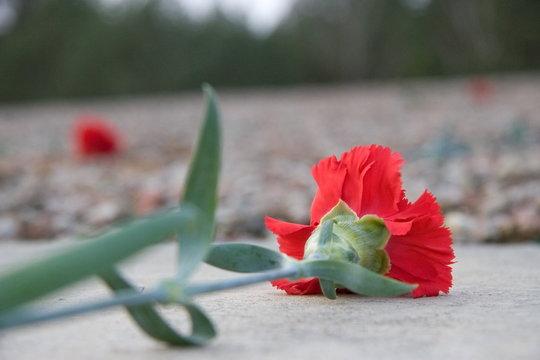 Memorial Sobibor