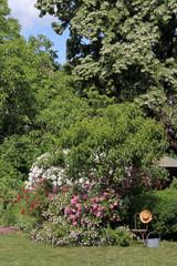 Gartenanlage mit verschiedenen Rosen