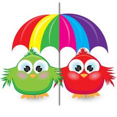 Two cartoon sparrow under the colorful umbrella