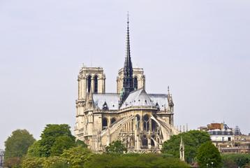 Notre Dame de Paris. Symbol of Paris. island Cite. River Seine.