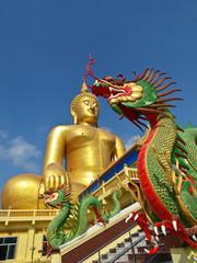 Buddha and Dragon