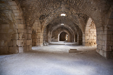 Crack de chevalier. Hall. Syria
