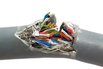 Bundle of color cables