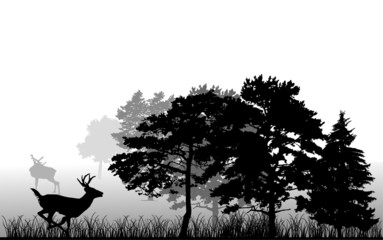 trees and running deer silhouette