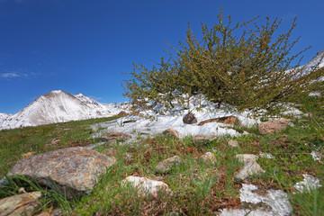 Pagano peak