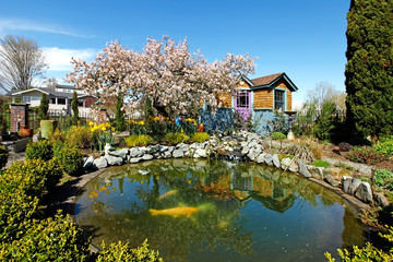 Spring time back yard with pond and blooming tree Wall mural