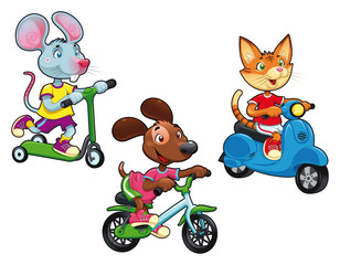 Animals on vehicles. Vector isolated characters.