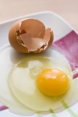 huevo y su cascara