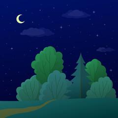 Landscape, night summer forest
