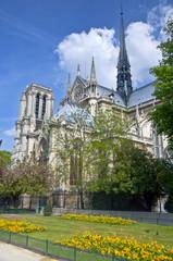 Notre Dame de Paris. The view from the park.