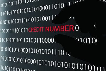 Credit number stealing