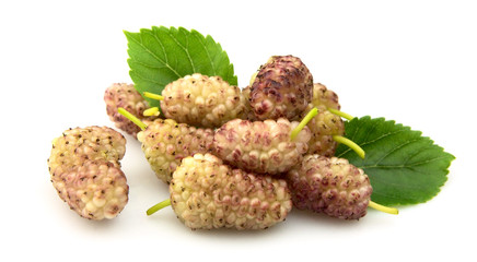 Pink mulberry with leaves on a white background