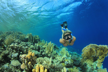 Beautiful Woman snorkeler dives down over a coral reef