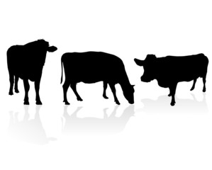 cow vector silhouette